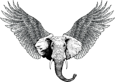 four hundred and twenty-five elephants flying in the sky